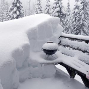 Grill-in-Snow
