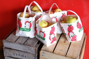 Honeycrisps at Rocklands