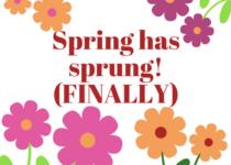 Spring has Sprung! Special Menus