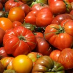 Late Summer Tomato Salad recipe